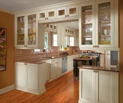cabinet in kitchen design design a kitchen online modern euro