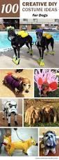 best halloween costume shops best 25 dog halloween costumes ideas on pinterest dog halloween