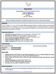 resume example    professional summary examples resume profile