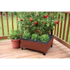 another option for an earthbox i found a couple at lowes today
