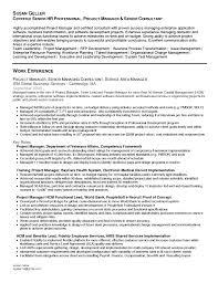 Corporate Travel Consultant Resume Sample Travel Consultant Resume Risk Management  Consultant Resume Sample Change Management Consultant Brefash