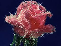 في روحك  وردة لمن   ترسل عطرها  / إهداء  لمن تحب بلغة الورد - صفحة 2 Images?q=tbn:ANd9GcSVtgHlptnqjm8CgAjZuqsESXcO3fNGPY20_fXR1l3cDlW1-Qnf