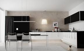 perfect modern kitchen ideas 2013 photo gallery trendy design
