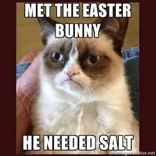 Grumpy Cat met easter bunny