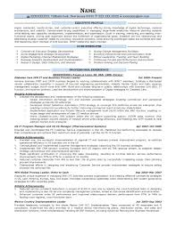 Director Of It Resume Examples by Executive Resume Samples Resume Prime