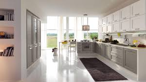 Ash Kitchen Cabinets by Kitchen Cabinet Mindsight Solid Wood Kitchen Cabinets Kitchen