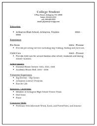 Resume Sample for a Sales Executive Car Sales Manager resume