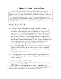 characterization essay example example of essay Essay about leadership characteristics list Effects of radiation on health essays  Example