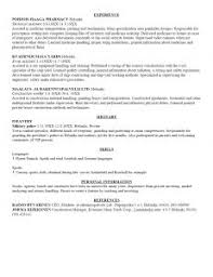 Sample Of Work Resume by Examples Of Resumes 93 Terrific Example A Professional Resume