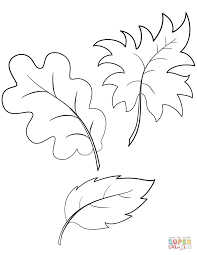 fall vegetables coloring page free printable coloring pages