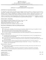 Objective Resume Samples       professional resume examples