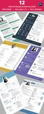 sample resume for java developer basic resume template 51 free samples examples format 12 creative resume bundle only for 25
