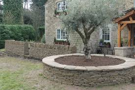 garden design and build broomhill tree and garden services