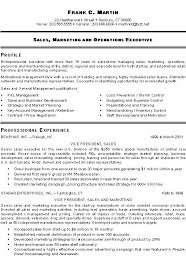 Pinterest     The world     s catalog of ideas Marketing Sales Executive Resume Example