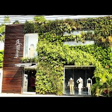 wonderful home design facade covered with outdoor plants combined