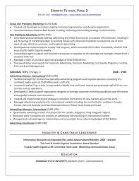 Resumes For Jobs Examples by The Top 4 Executive Resume Examples Written By A Professional