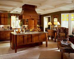 Kitchen Cabinets And Islands by Interior Design Modern Kitchen Design With Kraftmaid Kitchen
