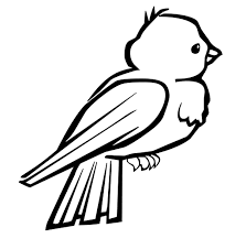 coloring pictures of birds colouring pages olegandreev me