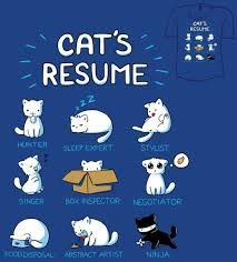 images about Cat A Tude on Pinterest Cat S Resume  My Resume  Resume Writing  Free Resume  Resume Pure  Good Resume  Resume Shirt  Resume Humor  Funny Resume