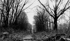 Haunted Reeder Road NWI Times