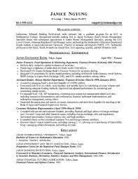 Application Resume Example by Grad Resume Example Berathen Com