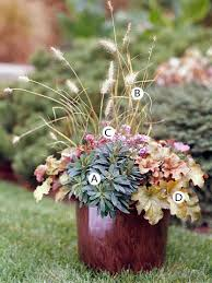 85 best container gardens fall images on pinterest fall