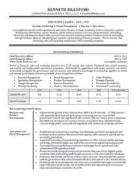 Best Executive Resume Format by High Level Executive Resume Example Sample