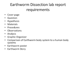 PPT   Earthworm dissection PowerPoint Presentation   ID