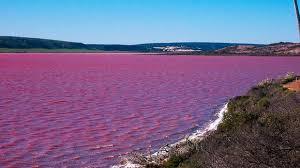 Hillier Gölü