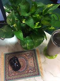Office Desk Plants by 4 Steps To Being More Productive At Work Samsill World Leaders