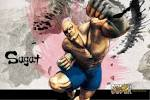 Super Street Fighter 4 Sagat Wallpaper | Customity customity.com