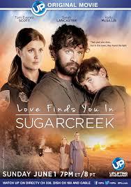 Ver Pelicula Love Finds You in Sugarcreek Ohio