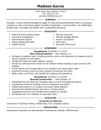 Resume Computer Skills Example  resume examples computer skills on