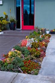 garden rockery ideas the 25 best succulent rock garden ideas on pinterest succulent