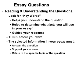 Essay Questions Reading  amp  Understanding the Questions    Look for    Key Words    Helps you