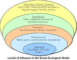 Buy research paper online environmental effects of fossil fuels     FAMU Online Paper Masters Custom Research Papers on Human Ecology