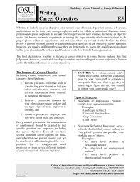 Resume Objective For Bank Teller Bank Teller Resume Objective Job  Interviews Bank Teller Resume Objective The