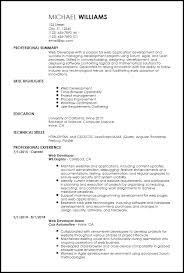 Free Entry Level Web Developer Resume Templates   ResumeNow