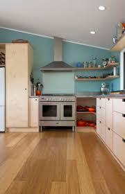Kitchen Cabinets South Africa by Best 25 Plywood Kitchen Ideas On Pinterest Plywood Cabinets