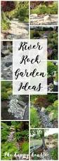 garden rockery ideas best 25 rock garden plants ideas on pinterest creeping phlox