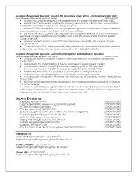 federal format resume sample federal resume free resume example and writing download federal resume example federal resume example for erika ogilvy federal level resume samples 2