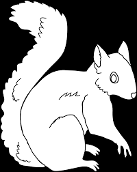 awesome squirrel coloring pages printable demonstrating squirrel