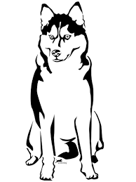 husky coloring pages free printable coloring pages for kids 17757