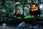 Borneo Safari - Best Borneo Lodges to visit on your Borneo Holiday ...