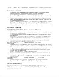 Examples Of Summaries On Resumes by Financial Analyst Job Resume Sample Fastweb