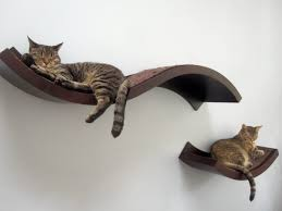Wall Hanging Shelves Design Wall Shelves Design Gorgeous Wall Mounted Shelves For Cats Cat