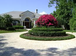 florida landscaping design ideas u2014 jbeedesigns outdoor palm