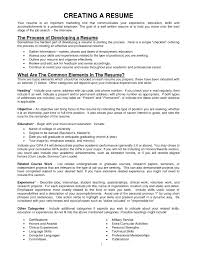 Sample Undergraduate Resume Example Resume With References Resume For Your Job Application