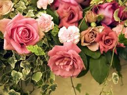 வால்பேப்பர்கள் ( flowers wallpapers ) - Page 5 Images?q=tbn:ANd9GcSj537tRJO4Xvb-zbNsCWDX6vNSddq9YTE0C6CPY91EyD3GkgwiiA