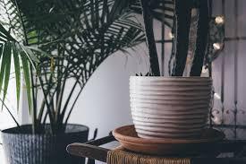 free images table wood vase decoration lighting interior